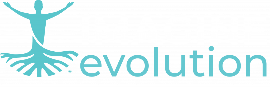 imagine evolution logo